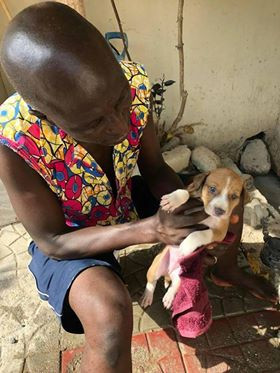Ghana SPCA Expands their Humane Ed Program (thanks to AKI donors!) & Aluizah Gets a Puppy!
