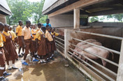 Dec Livestock & Poultry Research Centre 19.JPG