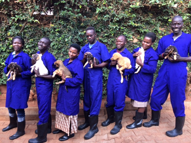 Haven staff in their new, AKI-purchased, uniforms with puppies