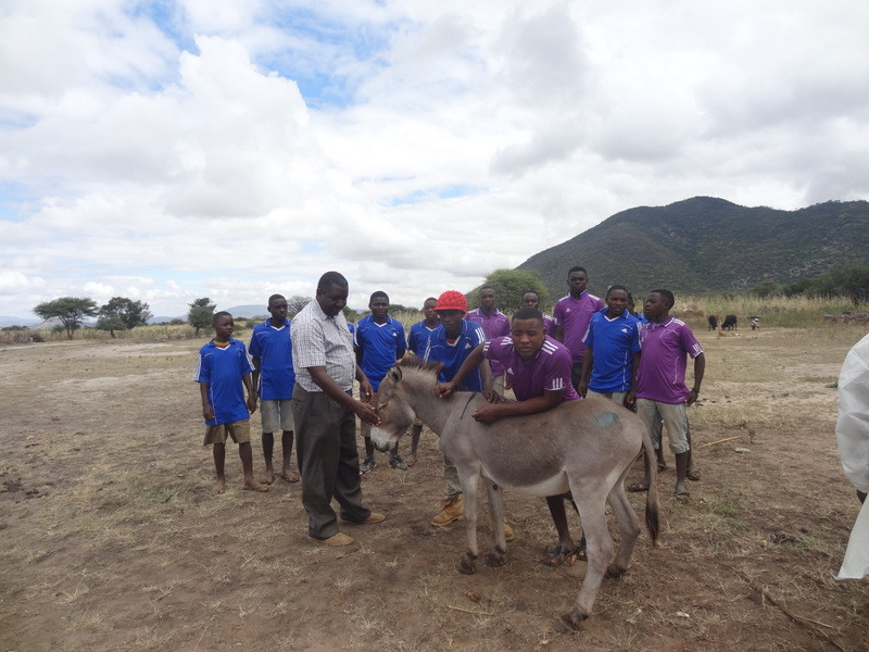 TAWESO football teams-all are donkey owners