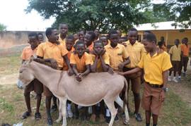 Upper East Region Nyariga JHS