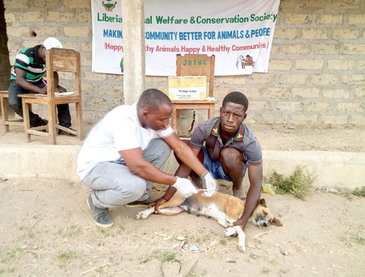 March-Animal Care Clinic