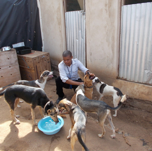 Tanzania Animal Welfare Society Grateful for Support from AKI Donors