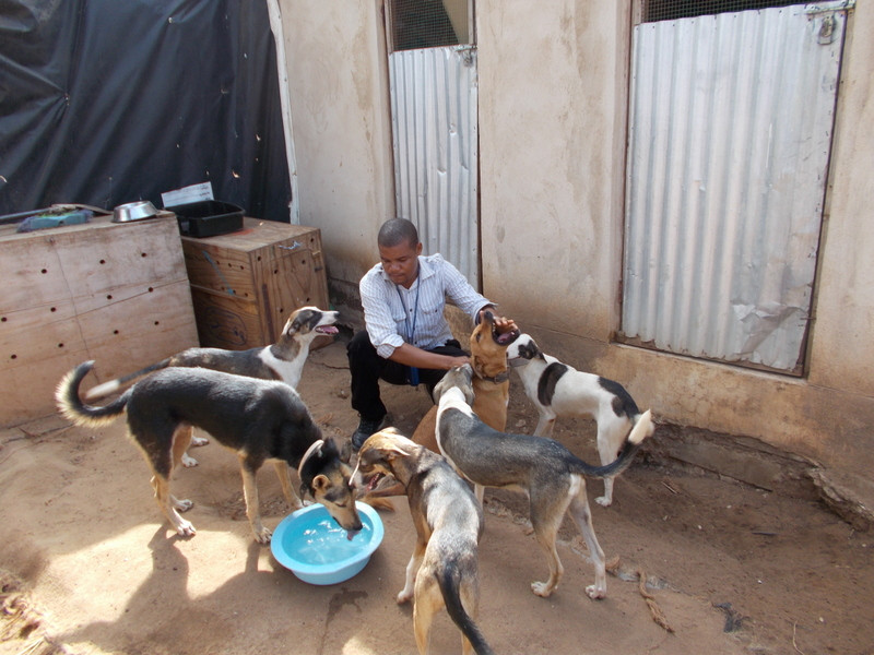 The TAWESO kennels, built with AKI funds
