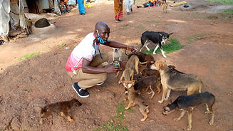 Makindye owner agreed to get 4 mamas of 18 puppies spayed June 28_edited.jpg