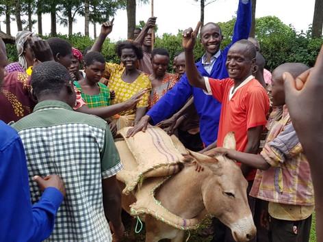 Uganda-Bam Animal Clinics