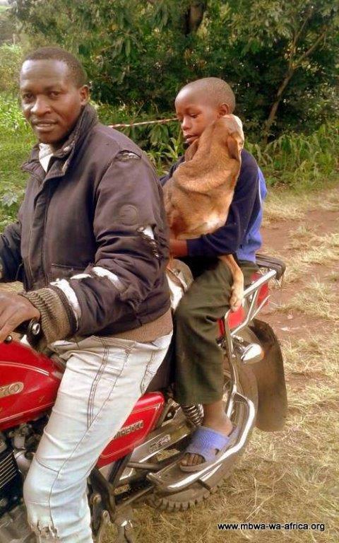 Luna went home on a motorbike