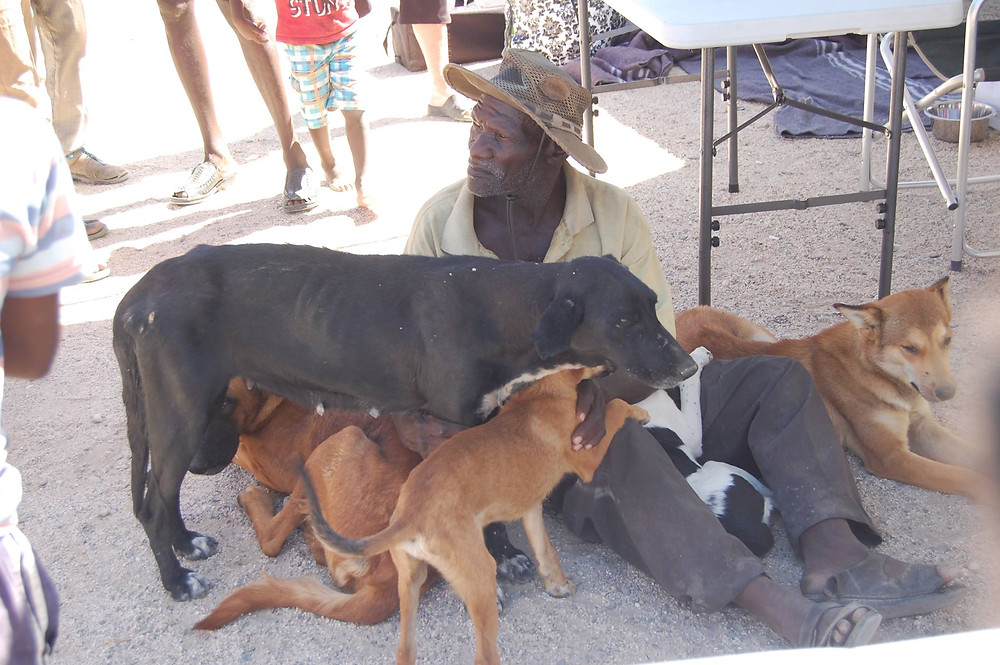 This man has several dogs, all of whom were sterilized at the clinic