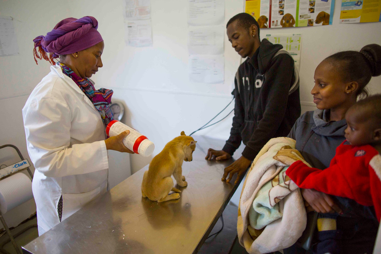Mdzananda Clinic