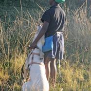 Funda Nenja encourages bonds between children & pets