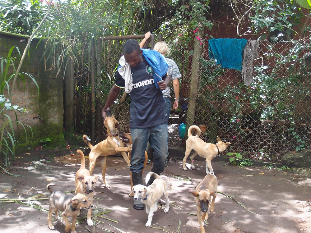 Maiko, animal caretaker at MwA