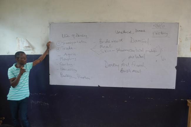 Trust Academy HE donkey lessons July-8.JPG