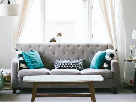 What You Need To Know When Choosing New Carpet!