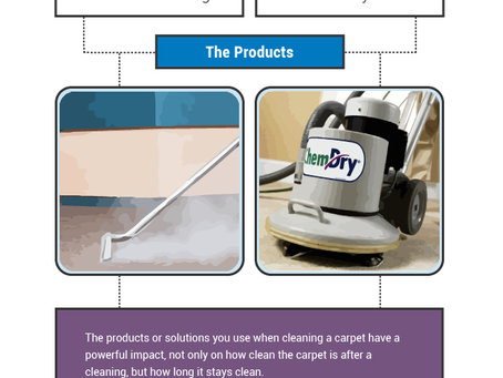 Chem-Dry Vs. Steam Cleaning (Infographic)