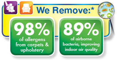 carpet and upholstery cleaing by chem-dry removes 98% of allergens and 89% of airborne bacteria