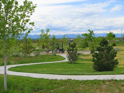 River Oaks Multi-Family Development, Denver, CO