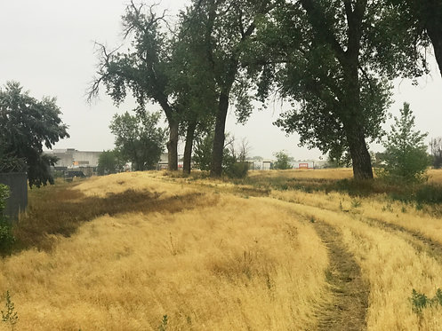 High Line Canal Trail Completion, 38th Avenue to Colfax, Aurora, CO