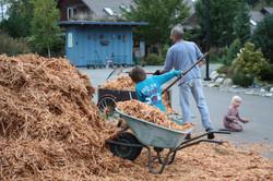 Mulch for the Garden