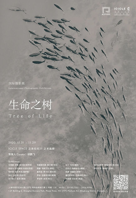 Kerstin Kuntze | Shanghai Exhibition Tree of Life
