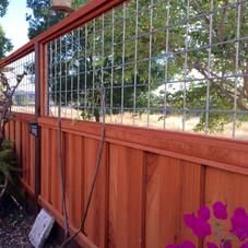 Transparent Fence