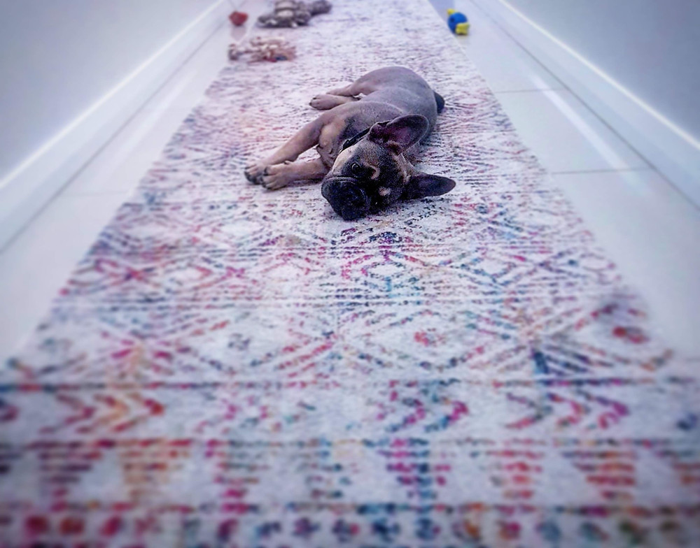 #dogtraining #puppytraining #rest