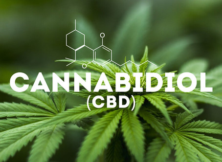 Our Top 3 Favorite CBD Products