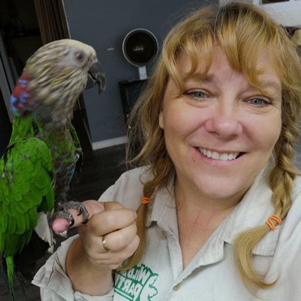 Tuesday:  Bird day.  See the parrots and learn about native birds