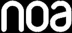 noa-icon.png