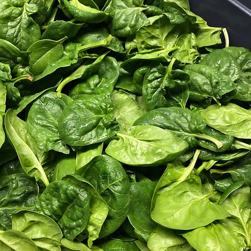 Spinach (5 oz) - Riverview Herbs