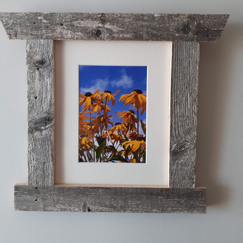 Sunflowers Reclaimed Wood Frames - Sea to Shore