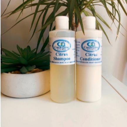 Citrus Shampoo and Conditioner Set - Casaroma Wellness Centre