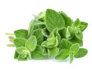 Oregano (1 oz bag) - Riverview Herbs