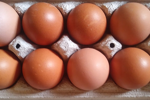 Eggs from Free Run Hens (Dozen)-Red Mountain Farm