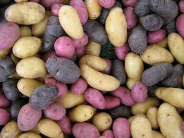 Medium Mixed Potatoes (lb) - Tina Friesen