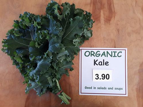 Organic Kale (bunch) - Bernhard Loewins