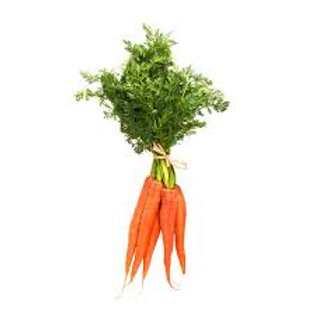 Carrot Bunch- Maria and Lydia