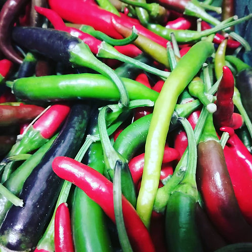 Extreme Heat Hot Peppers (10 Pack) - Snowy River Farms