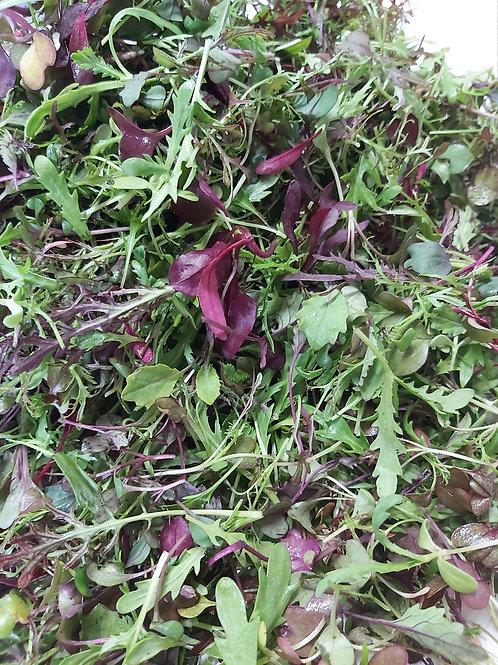 Micro-Mix (3 oz bag) - Riverview Herbs