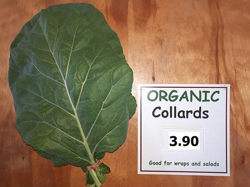 Organic Collared Greens (bunch) - Bernhard Loewins