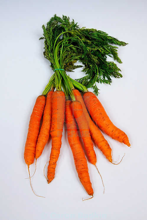 Fresh Carrots (2 lb bag) - Swooping Swallow Farm