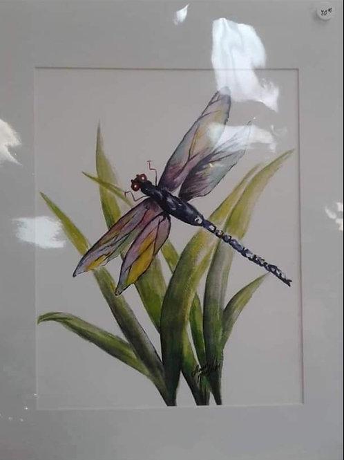Matted Prints from Watercolours 16 x 20 - Yodi Originals
