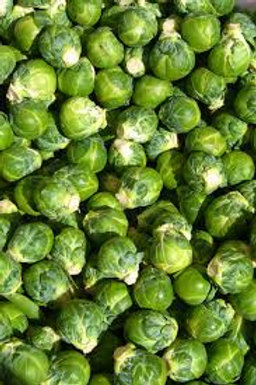 Brussel Sprouts  (per lb) - Tina Friesen