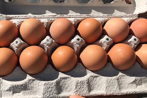 Large Free Range Eggs (dozen) - Swooping Swallow Farm