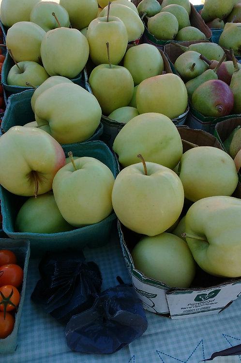 Apples (lb)  - Maria and Lydia