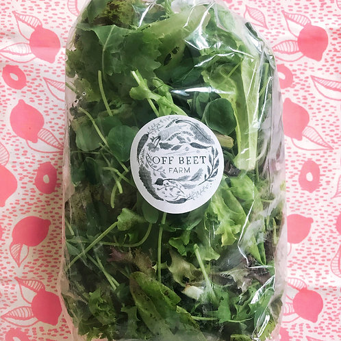 Salad Mix of the Week - Off Beet Farm