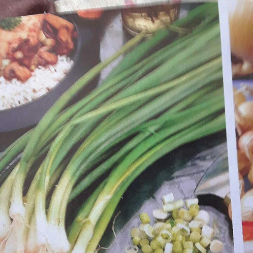 Green Onions (per bunch) - Maria and Lydia