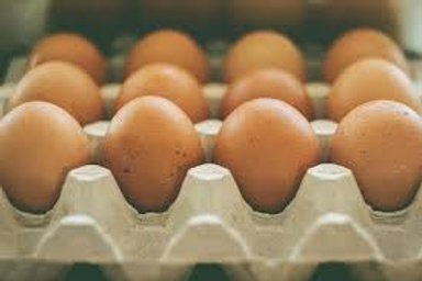 Medium Eggs (dozen) - Tina Friesen