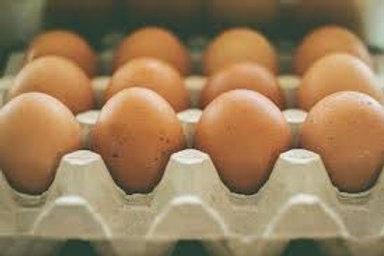 Orgainc Eggs (dozen) - Tina Friesen