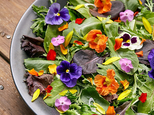 Edible flowers (scented and nasturtiums) - Riverview Herbs