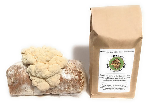 Grow Your Own Lion's Mane Mushroom Kit - Happy Caps Mushroom Farm
